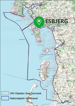 Esbjerg is located by the Wadden Sea and the west coast of Jutland, Denmark. The nature is ever changing due to the tidal waters.